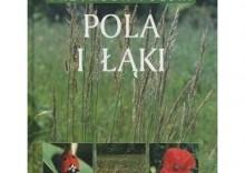 Przyroda Polski. Pola i łąki