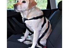 Trixie: Pas bezpieczeństwa dla psów - Rozmiar M: obwód klatki piersiowej 50 - 70 cm