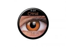 Crazy Wild Eyes CITRUS 2 szt