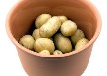 Pojemnik na ziemniaki Roemertopf