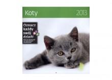 Kalendarz ścienny 2013. Koty