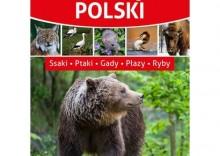 Zwierzęta Polski - Dostępne od: 2014-01-15 [opr. twarda]