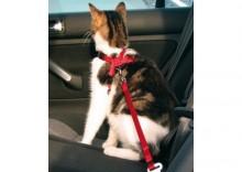 Trixie Szelki samochodowe dla kota [1294]