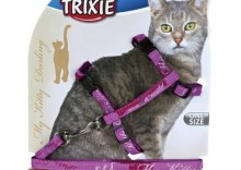 Trixie Szelki dla kota My Kitty Darling 27-44 cm/10 mm