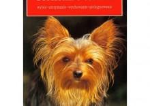Yorkshire terrier - Karin Biała-Gauss [opr. miękka]