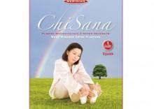Plastry Detox ChiSana 10 sztuk