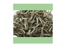 """Herbata Biała: Yin Zhen """"Srebrna Igiełka"""""""
