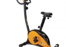 Rower treningowy Iron Body 7568BK