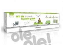 Canyon CNG-WII10N - Gratis Dostawa - Raty w 15 minut - Punkty Odbioru - Wysyłamy w 24h