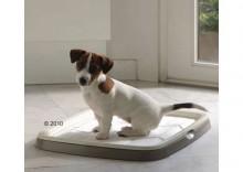 Puppy Trainer Starter Set - Zestaw oszczędnościowy: Large, 7 podkładek + 50 podkładek