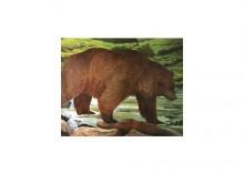 Tarcza z wizerunkiem zwierząt - niedźwiedź