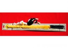 ZOLUX Zabawka wędka - struś dla kota