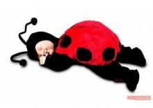 Lalka Anne Geddes Baby Śpiąca biedronka 12