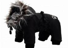 GRANDE FINALE Kombinezon zimowy dla psa czarny z białym futerkiem